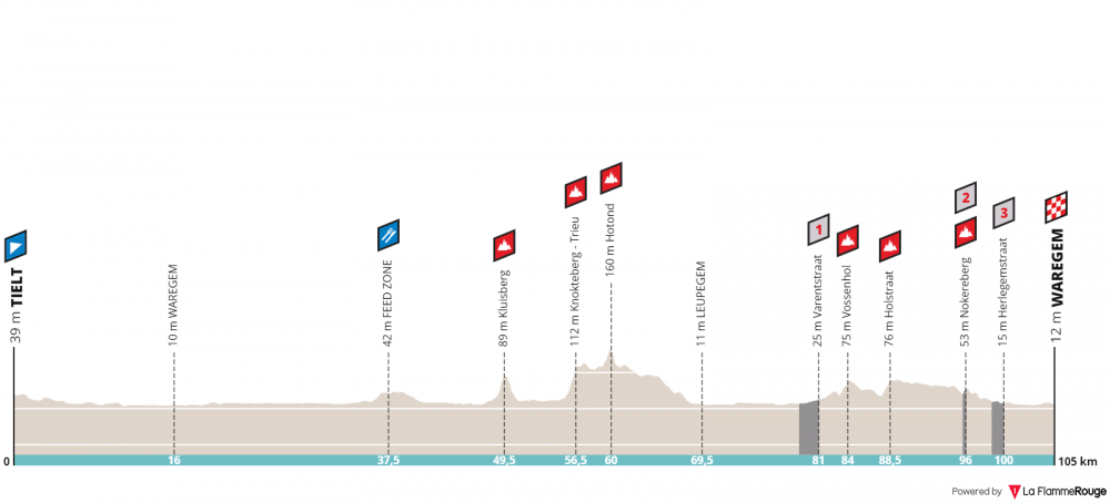 dwars-door-vlaanderen-a-travers-la-flandre-donne-elite-2019.png